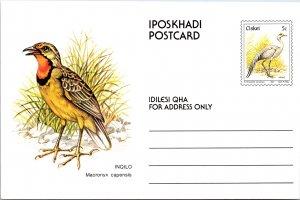 Ciskei, Government Postal Card, Birds