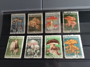 Romania 1957 Fungus used Stamps  R23300
