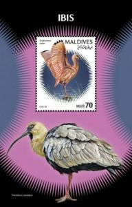 Maldives - 2019 Ibis on Stamps - Stamp Souvenir Sheet - MLD181201b