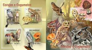 Mozambique 2013 birds owls mushrooms klb+s/s MNH