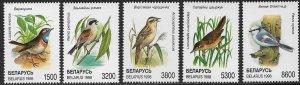 BELARUS 1998 BIRDS Set Sc 243-247 MNH