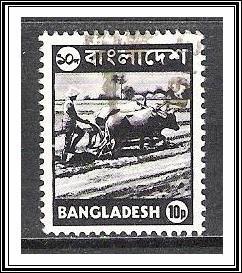 Bangladesh #96 Farmer Used