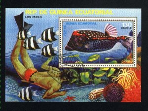 Equitorial Guinea   SS Fish NH VF   PD