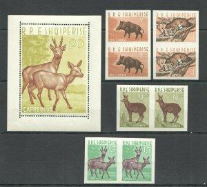 F0529 IMPERF,PERF 1962 SHQIPERISE,ALBANIA ANIMALS !! MICHEL 310 EURO BL+2SET MNH