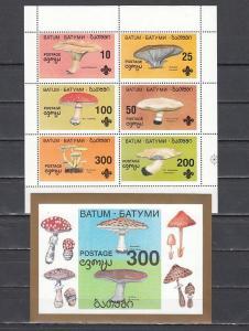 Batum, 23-28, 28a, Cinderella issue. Mushrooms set & s/sheet.  Scout logo.
