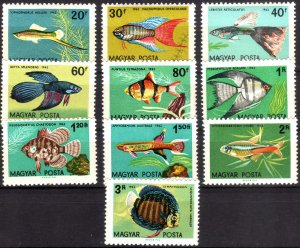 1962, Hungary, Tropical Fish set, MNH, Sc 1437-46