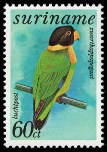 Suriname - Scott C65 - Mint-Never-Hinged