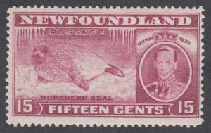 Newfoundland - #239 Long Coronation Issue, Seal Pup - MH