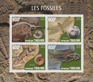 TOGO 05 11 2019 Code: TG190544a-TG190564b. Fossils.