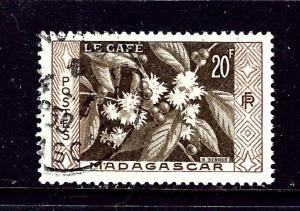 Malagasy 296 Used 1956 Coffee plant