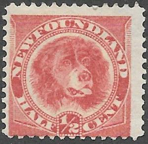 Newfoundland Dog Scott Number 56-58