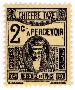 (I.B) France Colonial Postal : Tunis Postage Due 2c