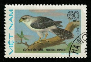 Bird (TS-2095)