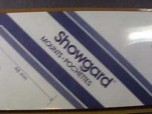 SHOWGARD MOUNTS # 48--215MM LONG x 48MM WIDE---15 STRIPS---BLACK /NEW