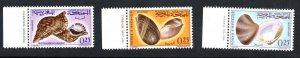 1965 - Morocco-  Maroc - Seashells- Coquillages- Complete set 3v.MNH**