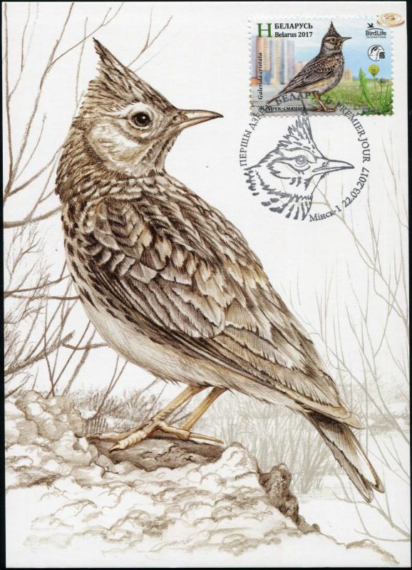 Belarus. 2017. Crested lark (Maximum Card, M)