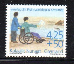 Greenland Sc B21 1996 Handicapped & Disabled stamp mint NH