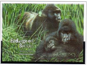 Guernsey Sc 952 2007 Mountain Gorilla stamp sheet used