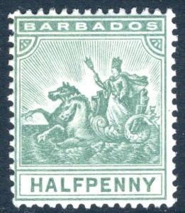 BARBADOS-1905 ½d Green  Sg 136 LIGHTLY MOUNTED MINT V16761