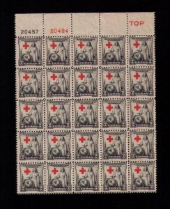 US Sc 702 MNH P# Block Of (25) Twenty Five F-VFHinged On 5 Only.Read Notes..