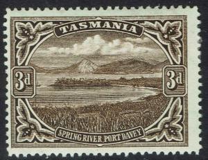 TASMANIA 1899 SPRING RIVER 3D WMK TAS