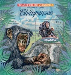 Uganda MNH S/S Chimpanzees Primates Wildlife 2012