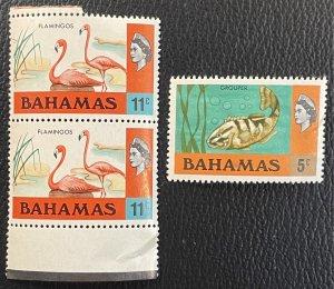 Bahamas #317,322 MNH VF/XF - Queen Elizabeth / Flamingos / Grouper 1971 [R788]