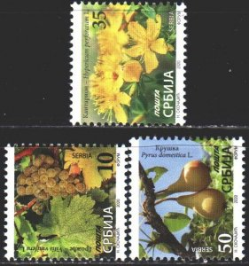 Serbia. 2020. Grapes, pears, flowers, flora. MNH.