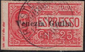 Austria-Trieste  SC NE1 Used on Piece 1918 SCV$ 130