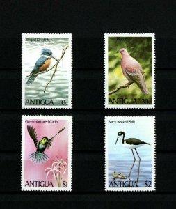 ANTIGUA - 1980 - BIRDS - KINGFISHER - STILT - CARIB - TERN + MINT - MNH SET!