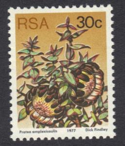South Africa 1977 MNH succulents   perf 12 1/2   30 c      #