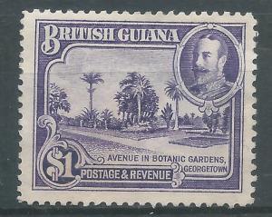 Br. Guiana 222 H