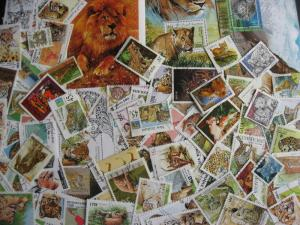 WILD CATS over 85 different + 4 SS. Some postally used, check them out!