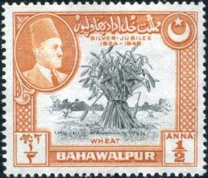Bahawalpur Sc#23 Used