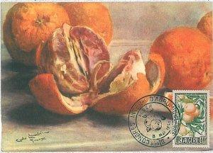 38747  - Algeria - POSTAL HISTORY - FDC   MAXIMUM CARD   1954 - FRUIT Oranges