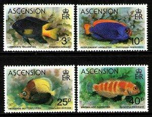 ASCENSION - 1980 - FISH - YELLOWTAIL - ANGELFISH - RAZORFISH + MINT MNH SET!