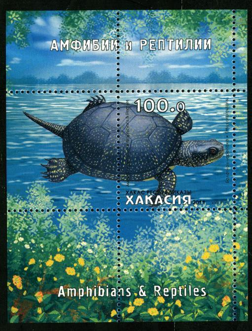 KHAKASSIA RUSSIA LOCAL SHEET TURTLES REPTILS