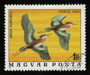Bird (TS-2075)
