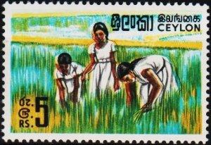 Ceylon. 1964 5R S.G.499 Unmounted Mint