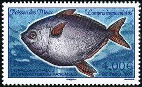 Scott #382 Fish MNH