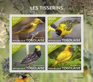 Stamps Togo 2019. - Weavers (Ploceus xanthops; Ploceus intermediate; Ploceus ben
