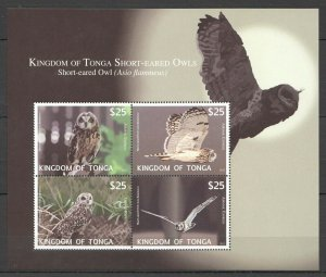 EC218 2012 KINGDOM OF TONGA FAUNA BIRDS OWLS 1KB !!! MICHEL 110 EURO MNH