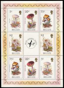 Belize 843, MNH, Mushrooms of Belize miniature sheet