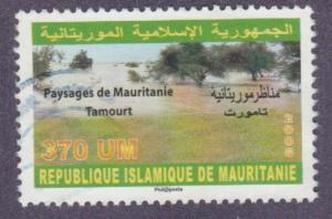 805 Paysages de Mauritanie - Tamourt
