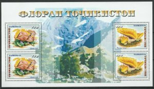 Tajikistan 1999 Mushrooms MNH Sheet