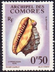 Comoro Islands 48 - Mint-H - 50c Red Helmet (Bullmouth) Shell (1962) (cv $1.25)