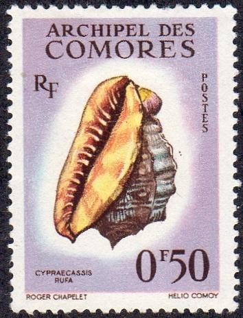 Comoro Islands 48 - Mint-H - 50c Red Helmet (Bullmouth) Shell (1962) (cv $1.25)