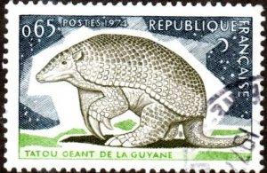 France 1408 - Used - 65c Giant Armadillo of Guyana (1974) (cv $0.55)