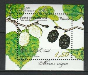 Bosnia and Herzegovina 2017 White and black mulberry MNH Block