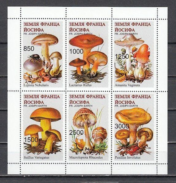 Fr. Josiph Earth, Russian Local, 11-16 issue. Mushrooms sheet of 6.